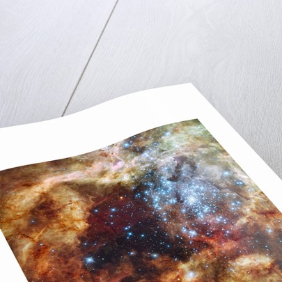 30 Doradus Nebula in the Large Magellanic Cloud by Corbis