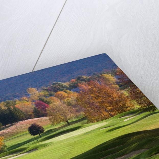 Golf course in Manchester, Vermont by Corbis