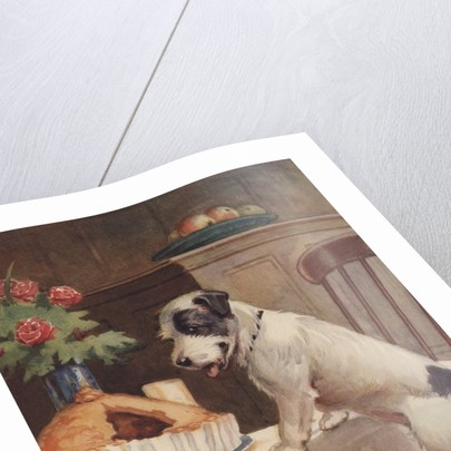 Illustration of dog eyeing pie on table by Corbis