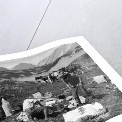 1920s 1930s three men cowboys at campsite preparing food horses in background alberta canada by Corbis