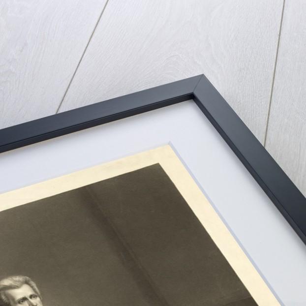 Portrait of Andrew Jackson by Corbis