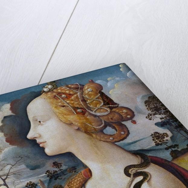 Portrait of Simonetta Vespucci by Piero di Cosimo
