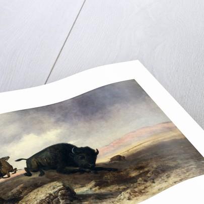 Buffalo Hunt by Astley David Middleton Cooper