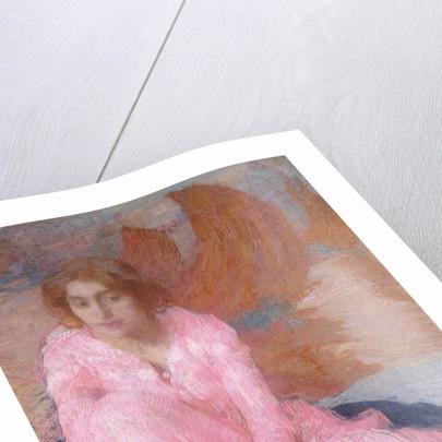 The Pink Dress by Edmond Francois Aman-Jean