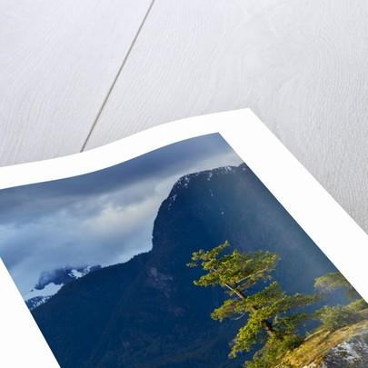 Desolation Sound, BC, Canada by Corbis