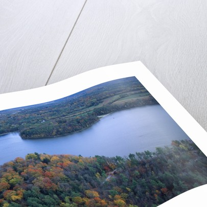 Aerial view of river and forest, Pittsfield, Massachusetts, USA by Corbis