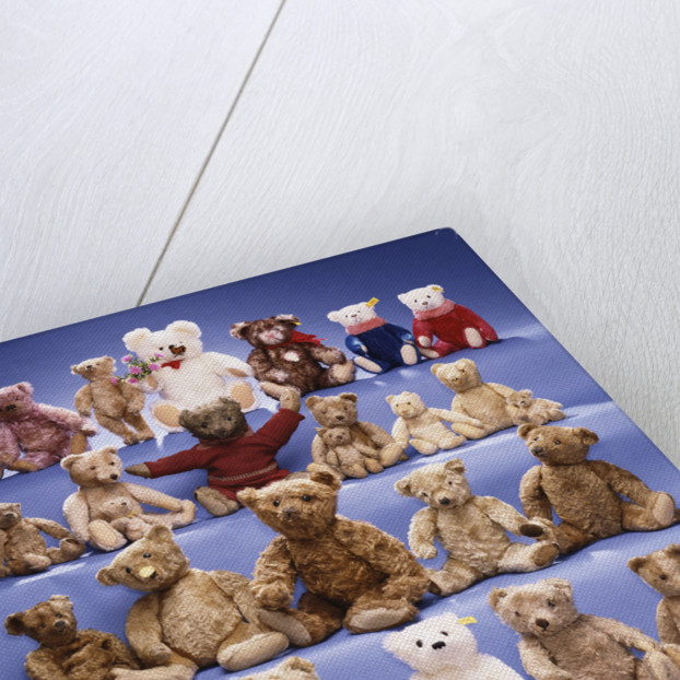 A collection of Steiff bears by Corbis