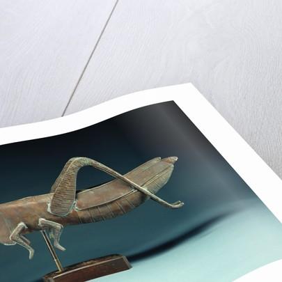 A grasshopper weathervane by Corbis