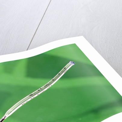 1960 1960s 1970 1970s Retro Still Life Thermometer Green Background Temperature Measurement Illness Medicine by Corbis