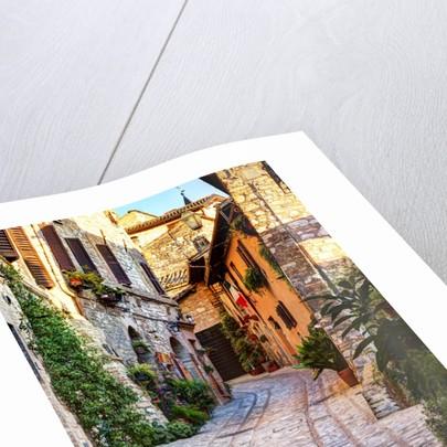 Street in Spello, Italy by Corbis