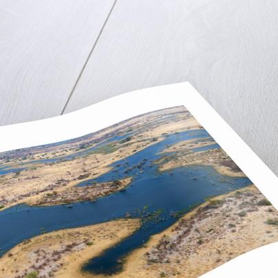 Okavango delta, Botswana by Corbis