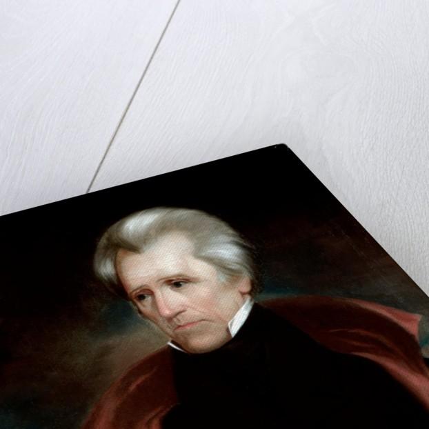 Andrew Jackson by Ralph Eleaser Whiteside Earl