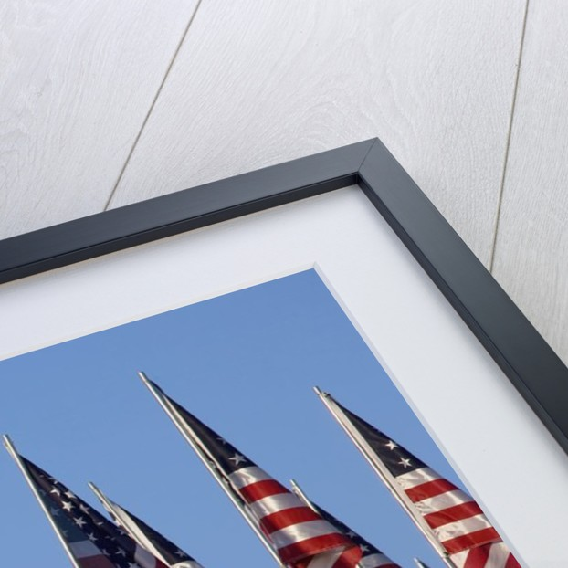 3000 US Flags for 9/11 by Corbis
