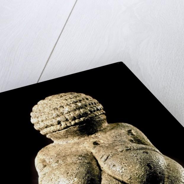 Venus of Willendorf by Corbis