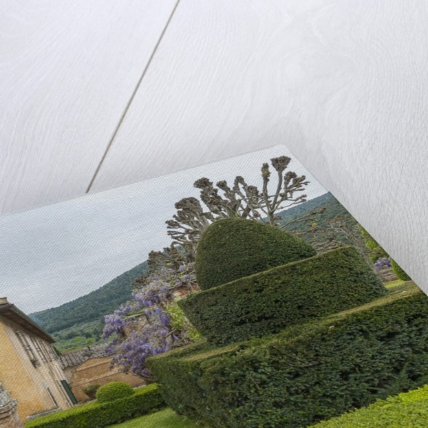 The garden of Villa Cetinale by Corbis