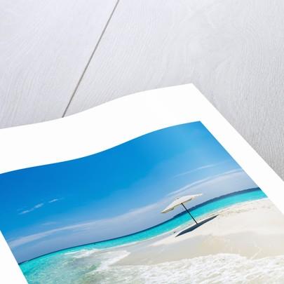 Beach Umbrella in The Maldives by Corbis