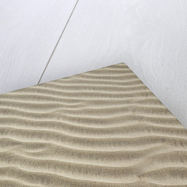Dune structures by Corbis