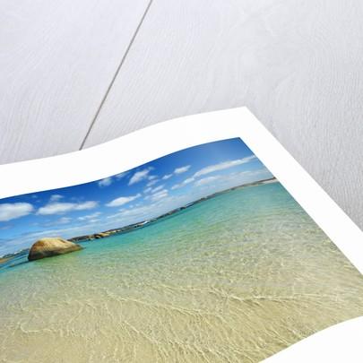 Ocean coast at Greens Pool by Corbis