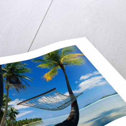Hammock Hanging Seaside by Corbis