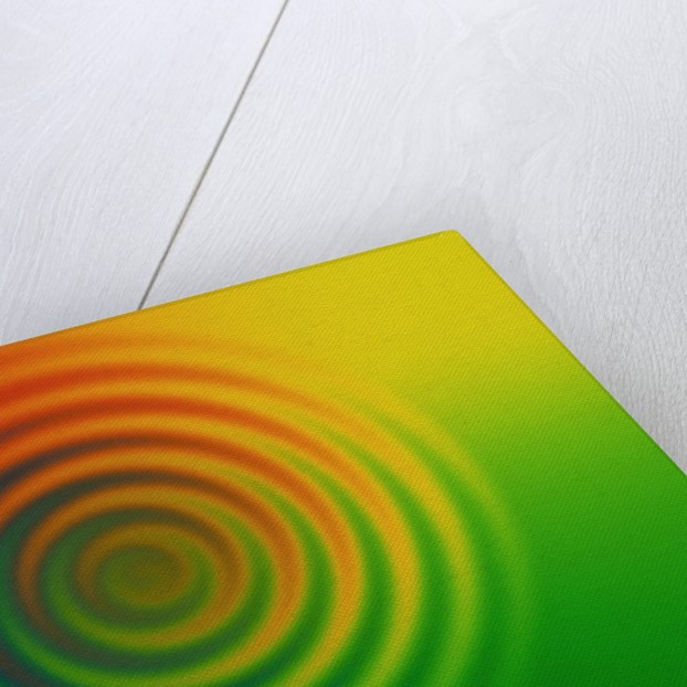 Concentric Circles in Color Field by Corbis