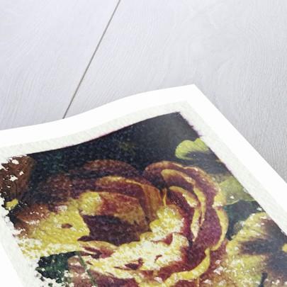 Monet's Flower by Kim Koza