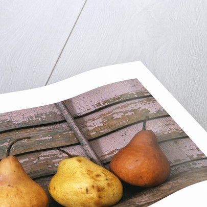 Studio-Pears by Kim Koza