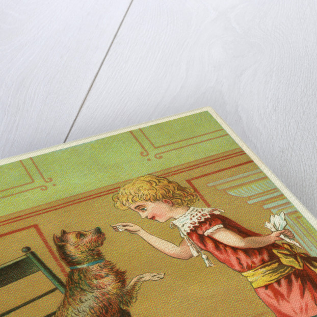 Trade Card of a Girl Training a Terrier Dog by Corbis