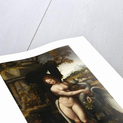 Leda and the Swan by Francesco Melzi