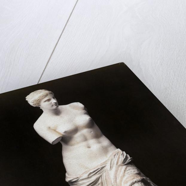 Venus de Milo by Corbis