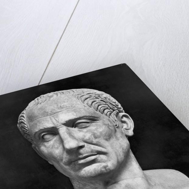 Bust Of Julius Caesar by Corbis