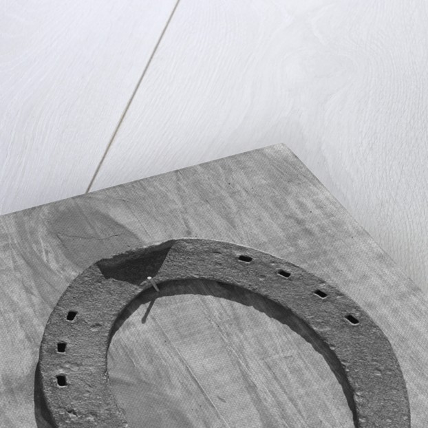 Horseshoe Hanging on a Nail by Corbis