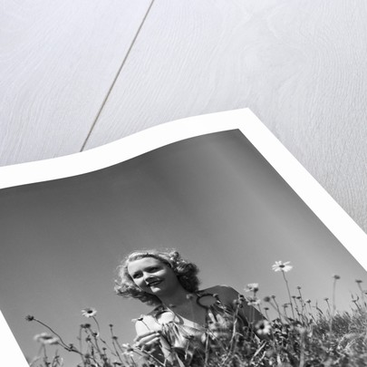 Woman in Wildflower Field by Corbis
