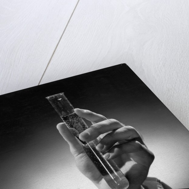 Hand Holding Test Tube by Corbis