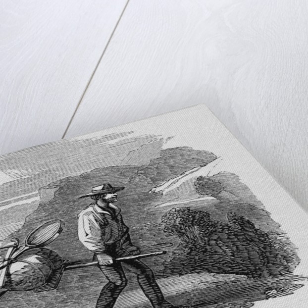Australian Gold Miners by Corbis