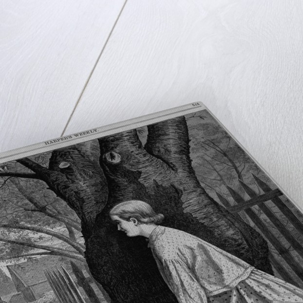 Hide and seek - an illustration for the juveniles by Frank Bellew