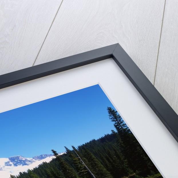Lake Recfleting Mount Rainier by Corbis