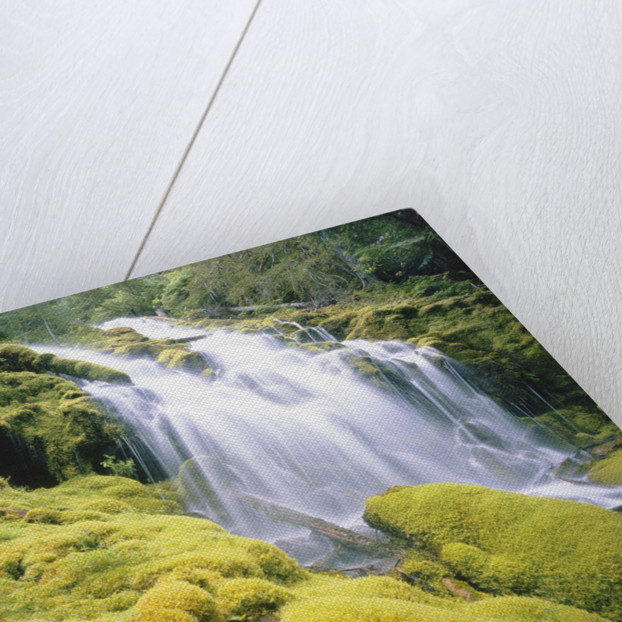 Proxy Falls by Corbis