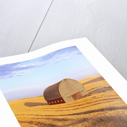 Barn in Harvested Field by Corbis