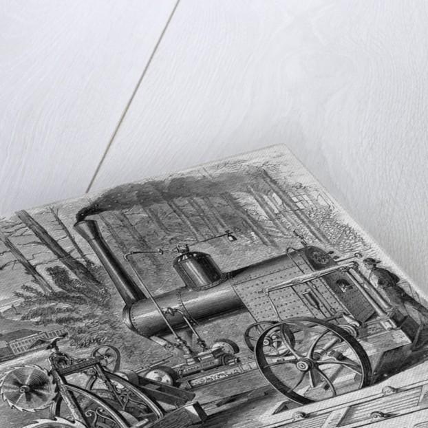 Worker Using Steam Circular Sawmills by Corbis