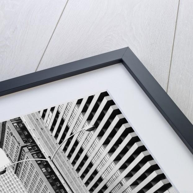Wrigley Building by Corbis
