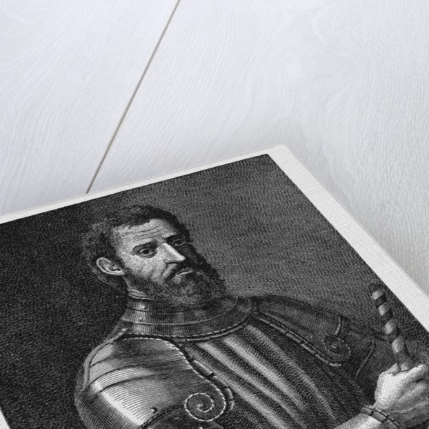 Giovanni da Verrazzano by Corbis