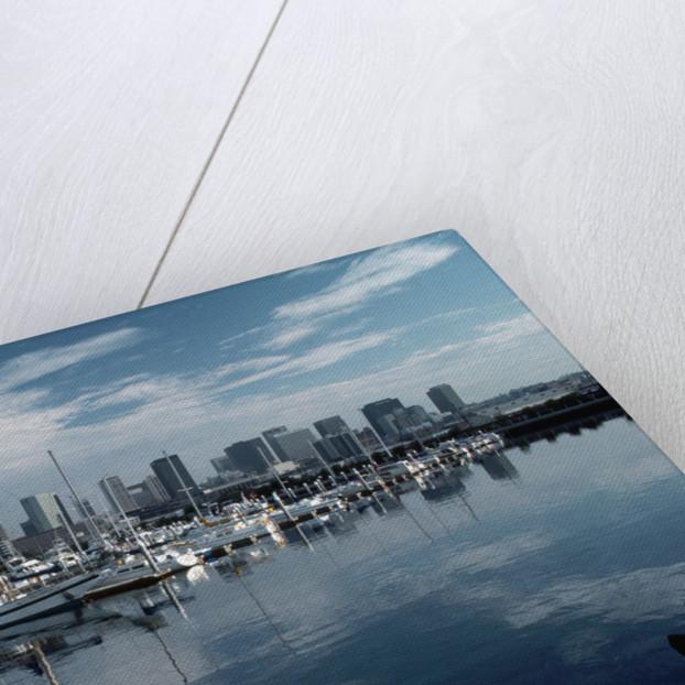 Sailboats Harbor at San Diego Embarcadero by Corbis