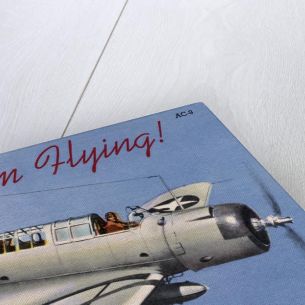 Vindicator Fighter Plane by Corbis
