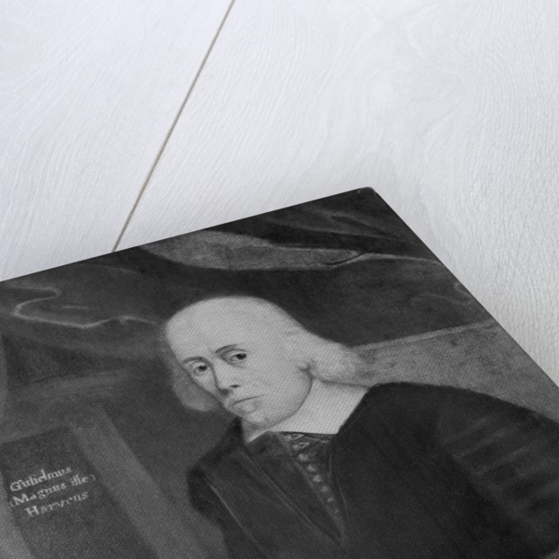 English Physician William Harvey by Corbis