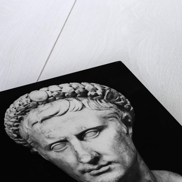 Bust of Augustus by Corbis