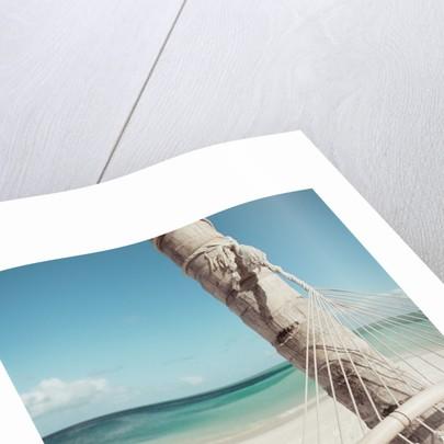Hammock on Beach by Corbis