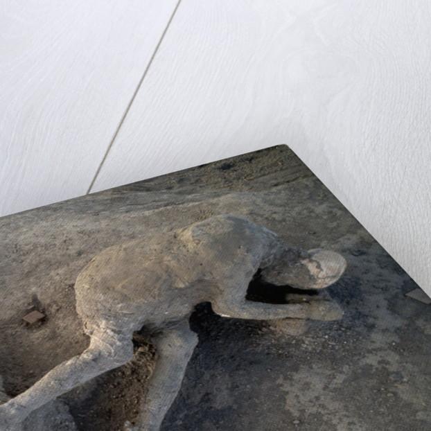 Bodies in Pompeii by Corbis