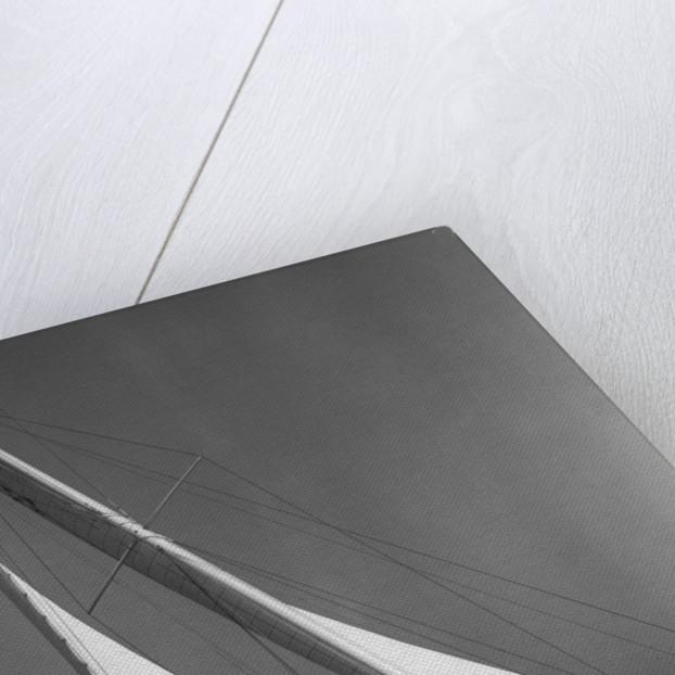 Ibis Yacht Cruising by Corbis