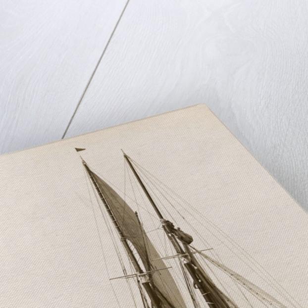 Bluenose Schooner by Corbis