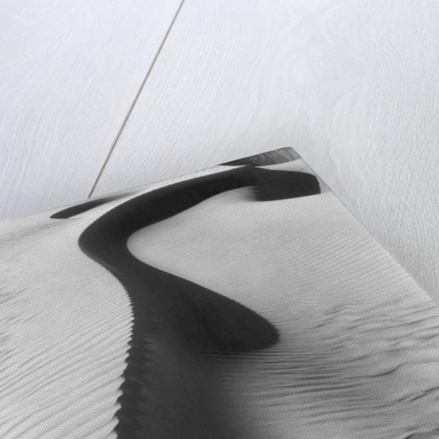 Dune, Oceano by Brett Weston